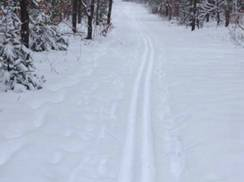 Image for Machickanee Ski Trail