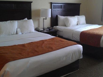 Image for Comfort Suites
