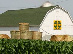 Image for Green County Barn Quilts