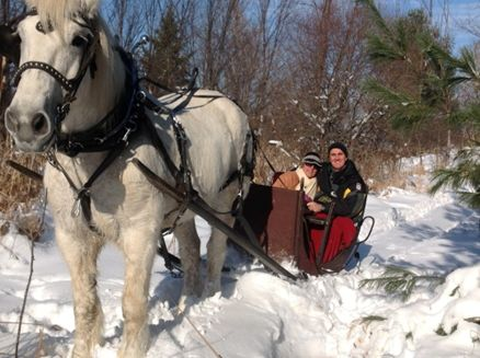 Image for Hoof Beats  Express, Carriage & Sleigh Service