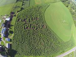 Image for Hidden Trails Corn Maze