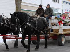 Image for Paddy's Queen Anne Carriage & Hay Rides