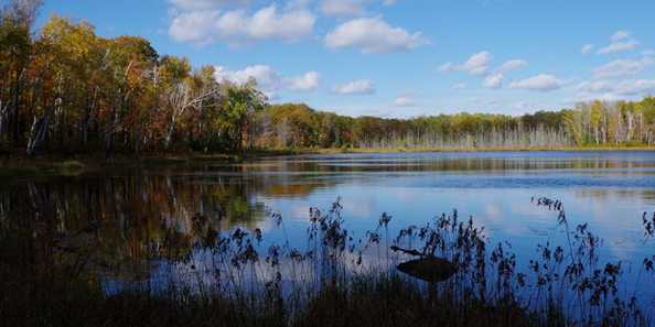 Tower Lake in the Rainbow Wilderness, Bayfield County.