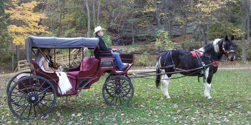 Wedding carriage ride.
