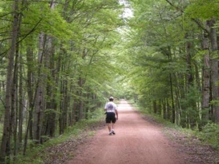 Image for Hiawatha State Trail