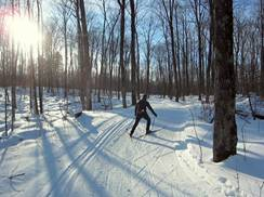 Image for Blue Hills Ski Trails
