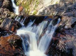 Image for Morgan Falls