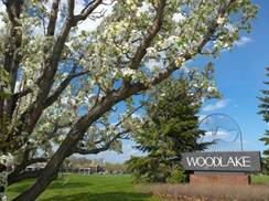 Image for The Shops at Woodlake