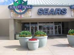 Image for Forest Mall