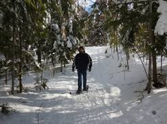 Image for Moccasin Lake Cross Country Ski Trail