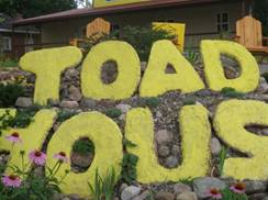 Image for Toad House Bakery