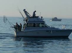 Image for Fishin' Magician Charters
