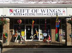 Image for Gift of Wings