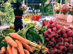 Image for Tosa Farmers Market