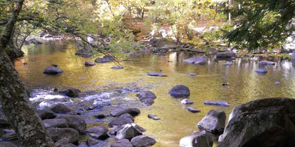 Enjoy 45 scenic campsites - many along the picturesque Embarrass River!