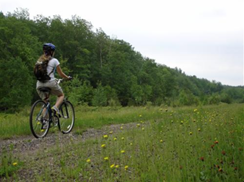 Image for Pine Line Recreation Trail