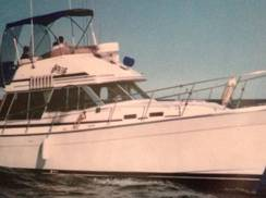Image for Trik Sea Charters, LLC