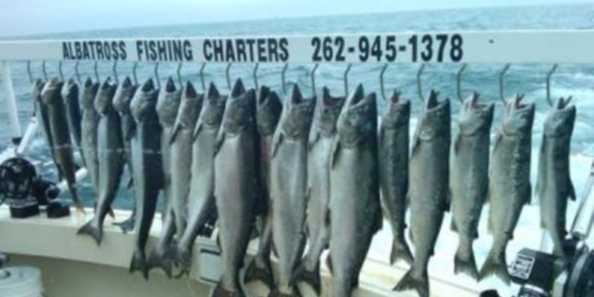 Huge Chinook King Salmon and a Limit catch all in one trip! Wow..