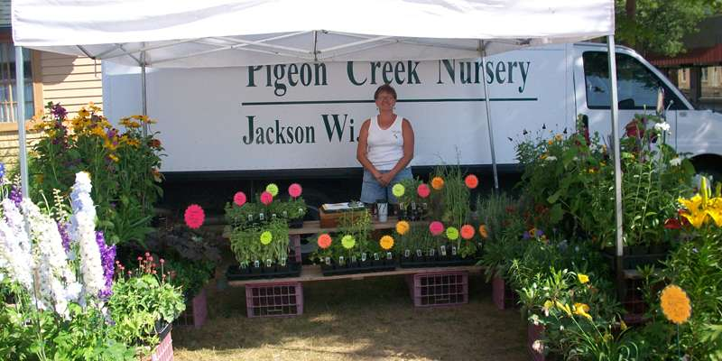 Pigeon Creek Nursery offers a varied selections of plants and herbs.
