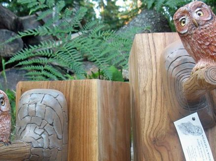 Image for Wildlife in Wood