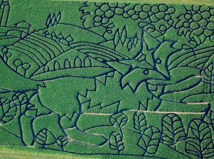 Image for Treinen Farm Corn Maze and Pumpkin Patch